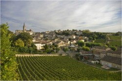 ZoomTravels-travel-france-bordeaux-vineyards